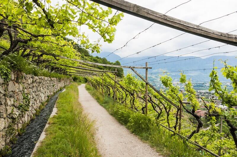 South Tyrol Walks