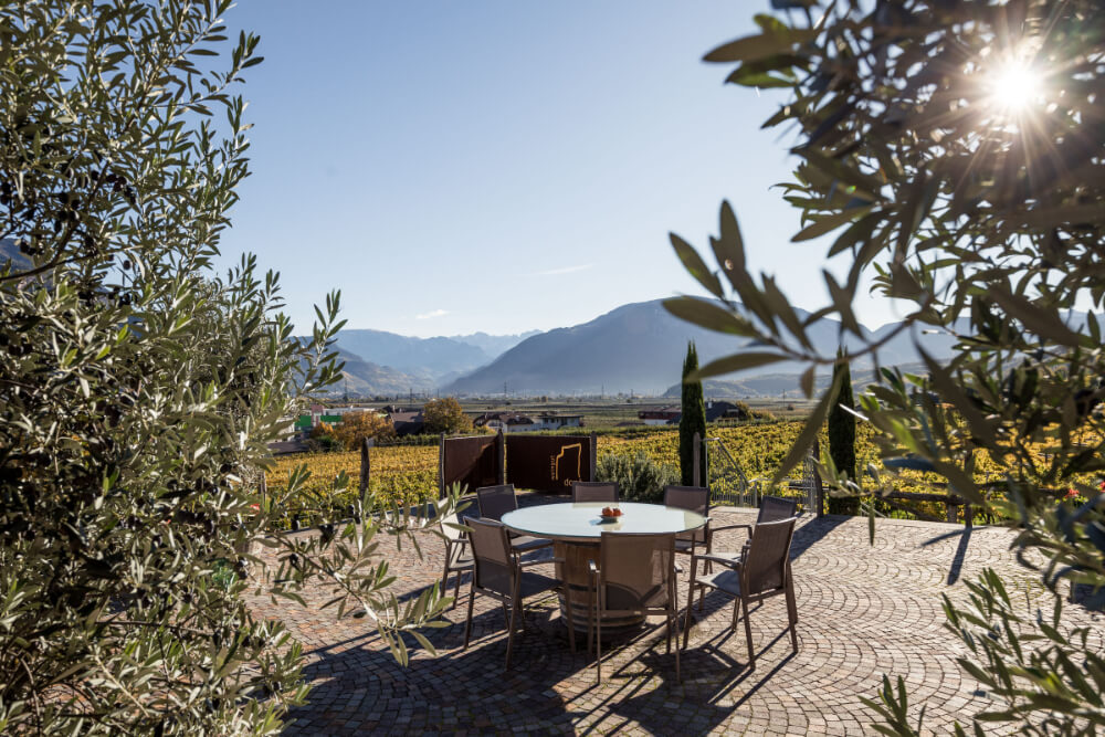 Romancing the Vine at Donà Winery 27