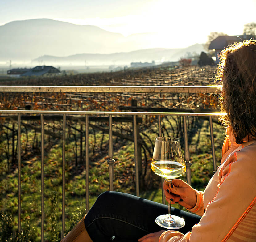 Romancing the Vine at Donà Winery 43