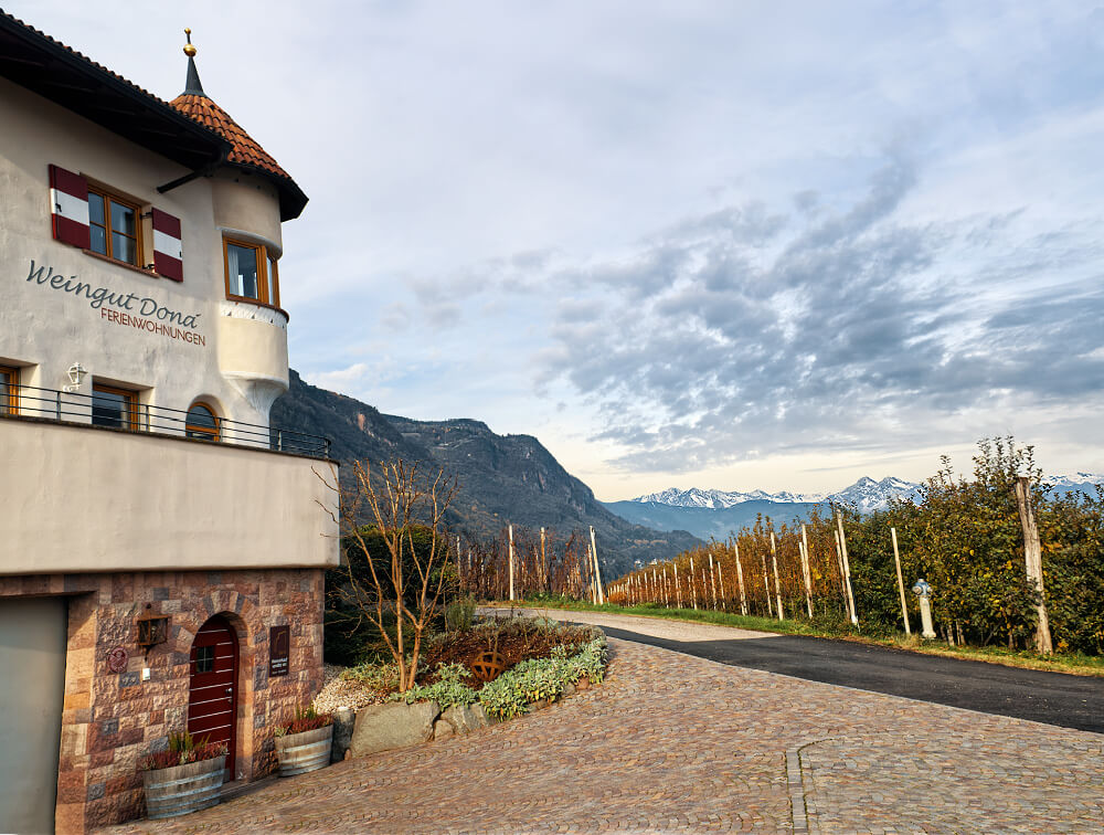 Romancing the Vine at Donà Winery 28