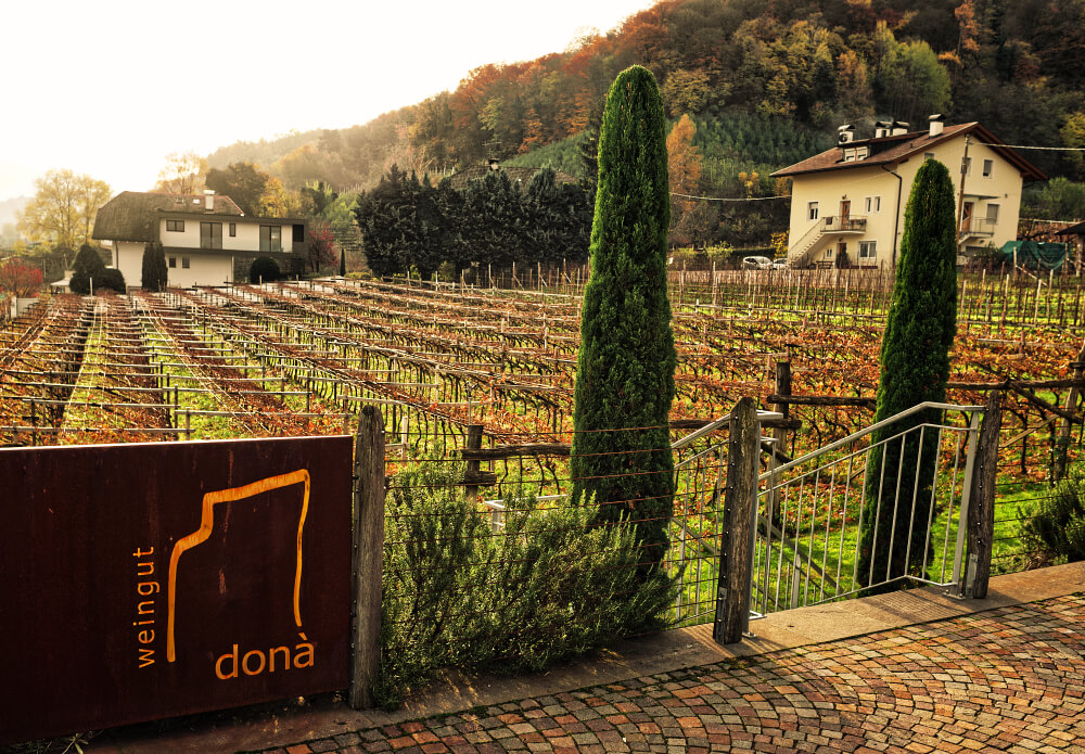 Romancing the Vine at Donà Winery 39