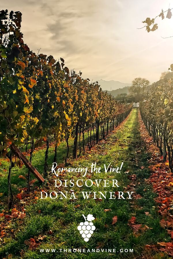 Romancing the Vine at Donà Winery 45