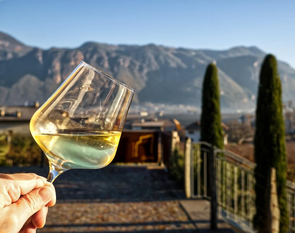 Romancing the Vine at Donà Winery 35
