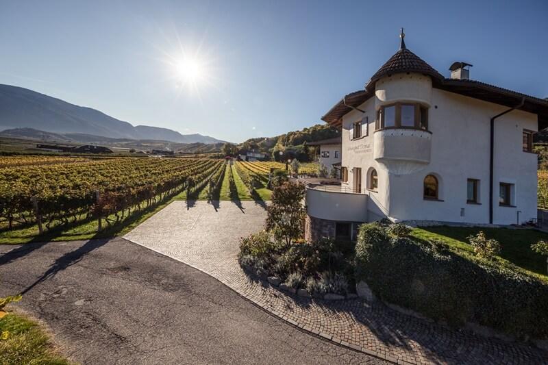 Weingut Dona Winery