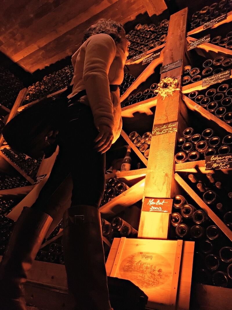 Castel Rametz Wine Cellar