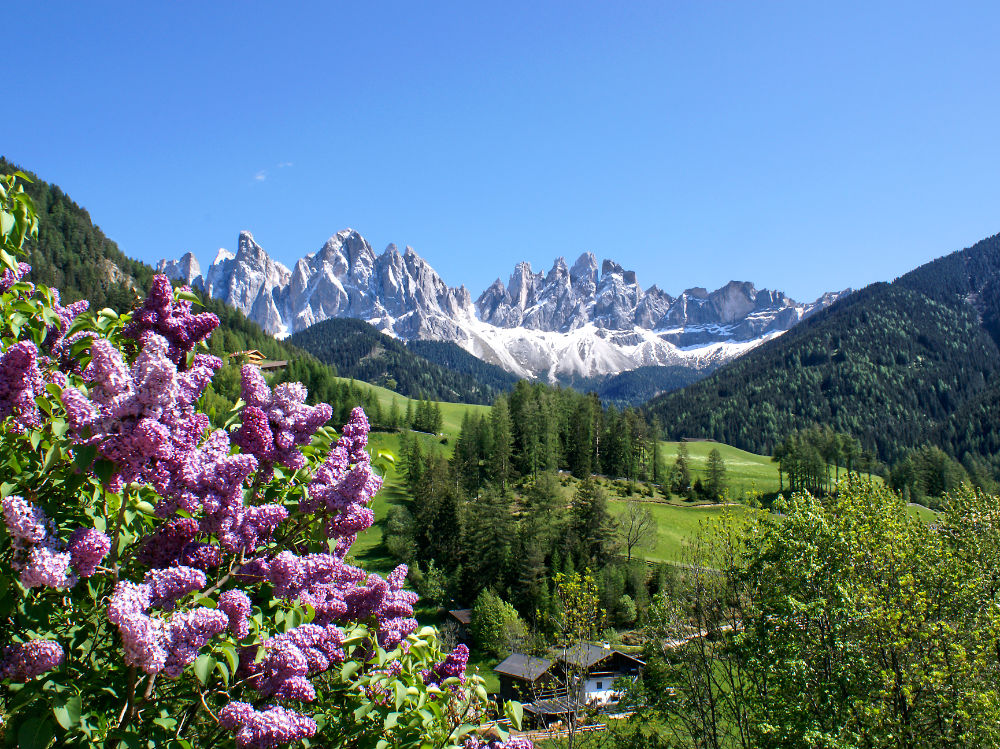 The Dolomites in Val di Funes