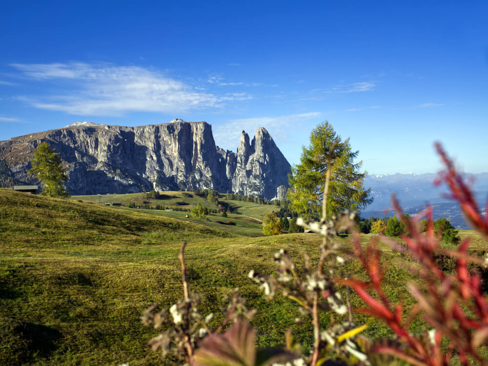 Hiking around Schlern in the Dolomites