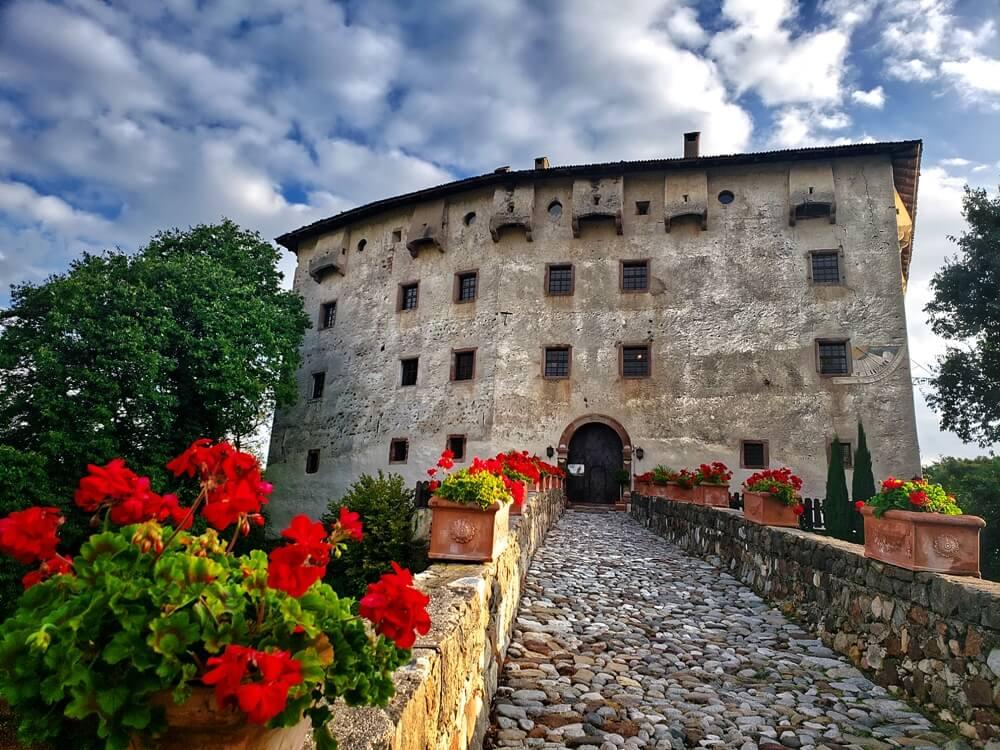 Castel Katzenzungen: Keeper of the World's Oldest Vine 39
