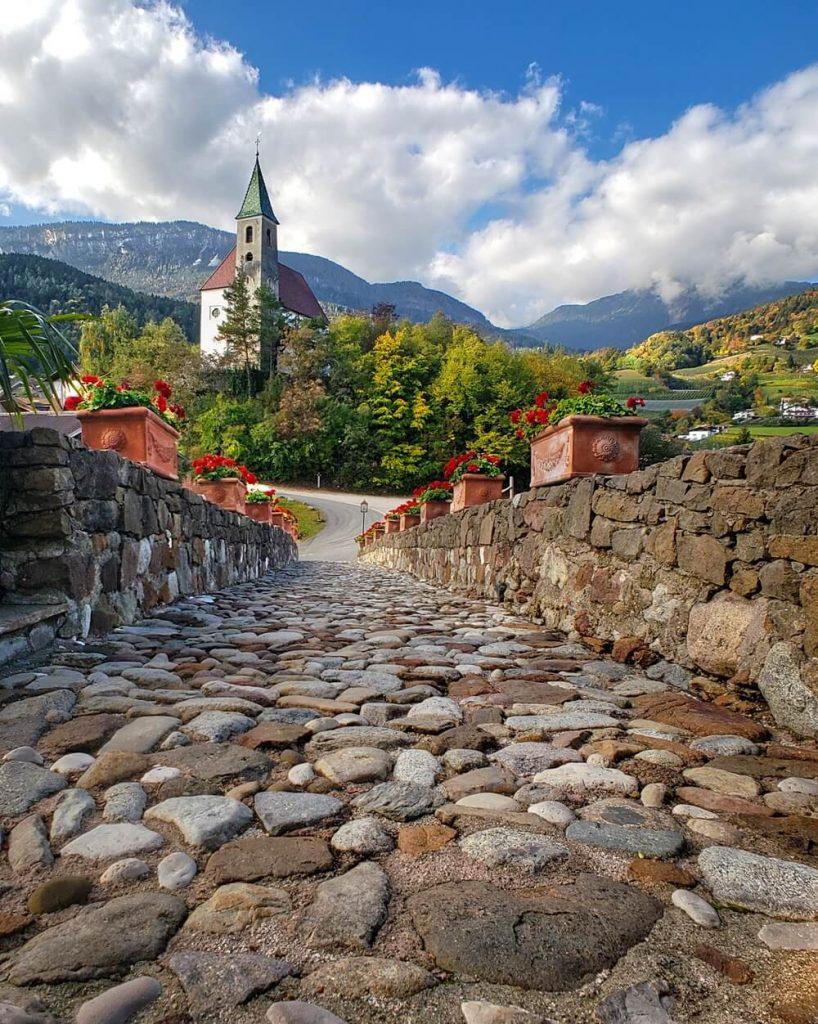Castel Katzenzungen: Keeper of the World's Oldest Vine 44