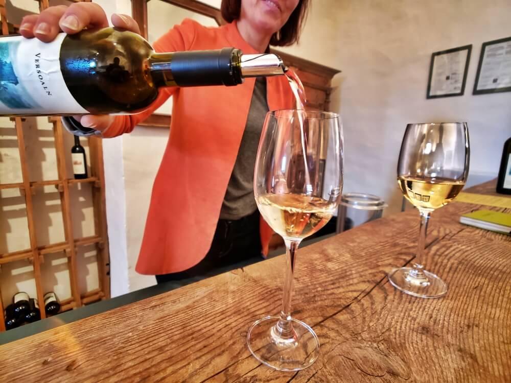 Castel Katzenzungen: Keeper of the World's Oldest Vine 43