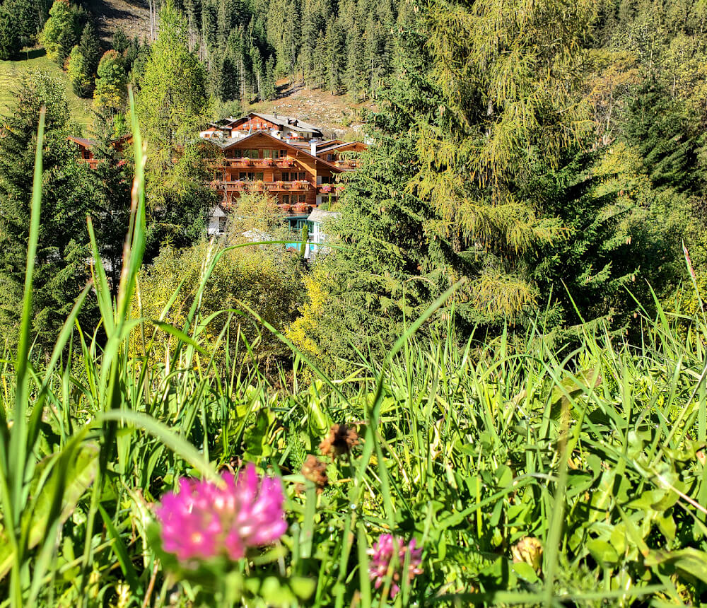 Hotel Quelle: Relaxed Luxury in the Alpine Wild 2