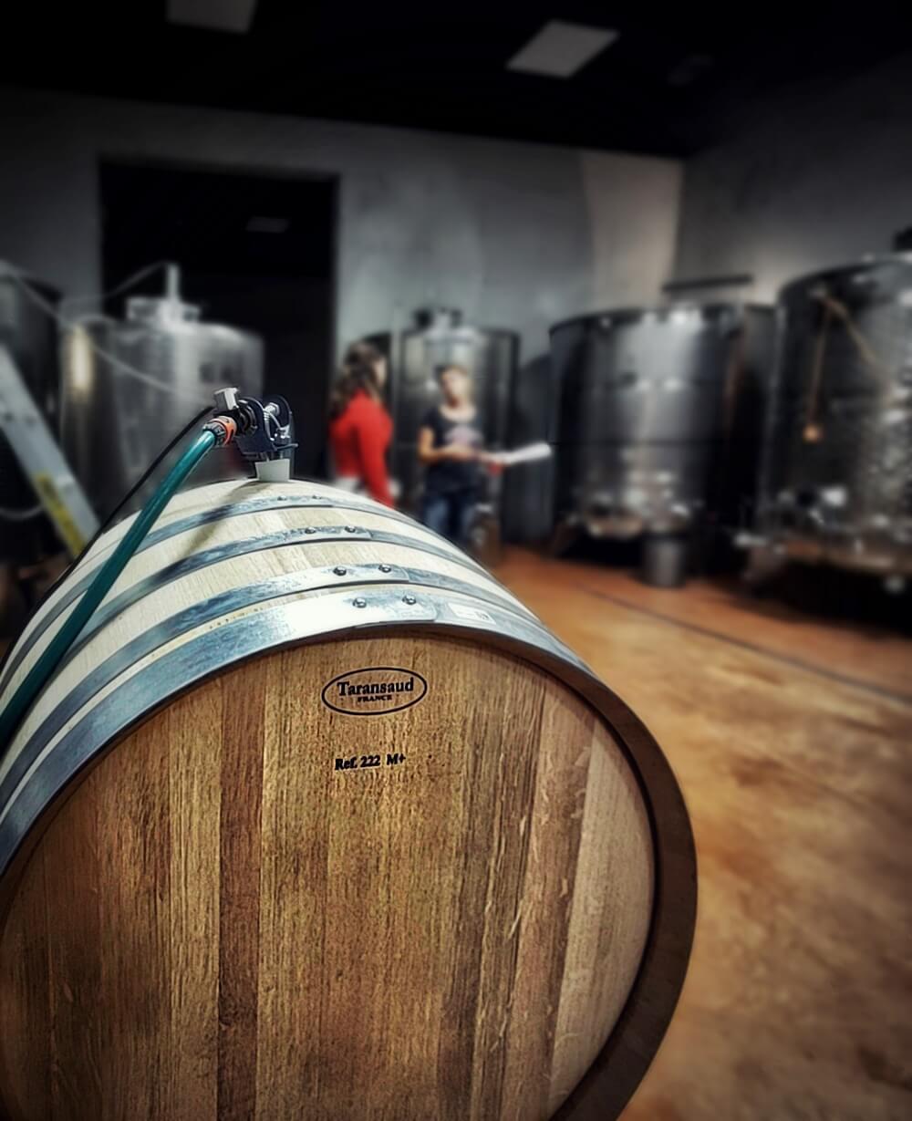 Prackfolerhof Wine Cellar