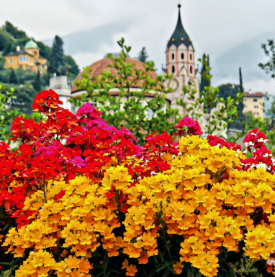 The Merano Grape Festival: Harvesting A Hearty Good Time in South Tyrol 76