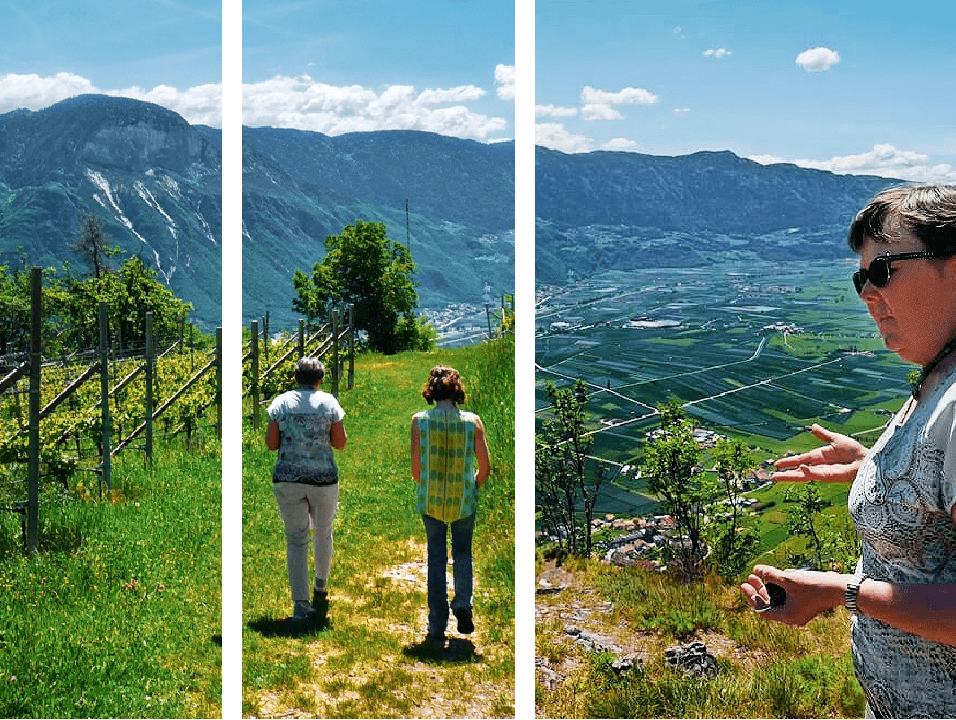 South Tyrolean Apples: Mountains of Goodness in Italy 4