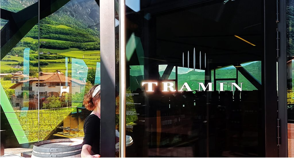 Cantina Tramin Wines: The Soul of the Mountain 9